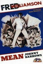 Mean Johnny Barrows (1976) afişi