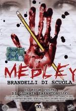 Medley - Brandelli Di Scuola