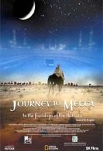 Mekke'ye Yolculuk (2004) afişi