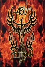 Meltdown (2004) afişi