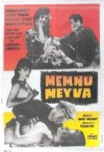 Memnu Meyva (1962) afişi
