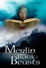Merlin Camelot'un İzinde (2009) afişi