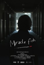 Miracle Fish