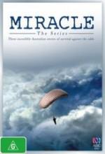 Miracles(ı) (2010) afişi