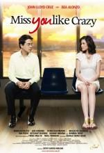 Miss You Like Crazy (2010) afişi