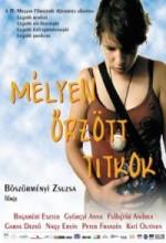 Mélyen örzött Titkok (2004) afişi