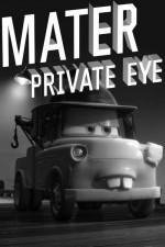 Mater Özel Göz (2010) afişi