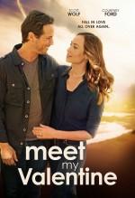 Meet My Valentine (2015) afişi