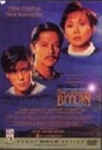 Nag-iisang Bituin (1994) afişi