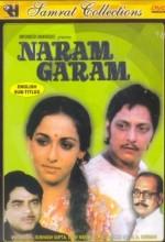 Naram Garam (1981) afişi