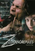 Nosedive (2007) afişi