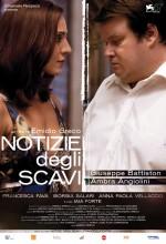 Notizie Degli Scavi (2010) afişi