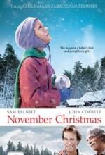 November Christmas (2010) afişi
