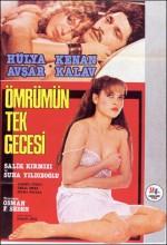 Ömrümün Tek Gecesi (1984) afişi