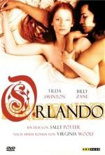 Orlando (1992) afişi