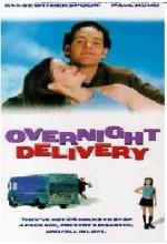 Overnight Delivery (1998) afişi