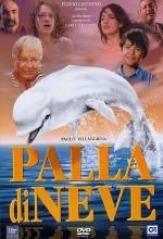 Palla Di Neve (1995) afişi
