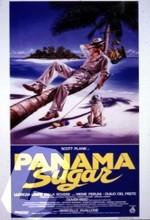 Panama Zucchero (1992) afişi