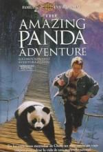 Panda Macerası (1995) afişi