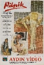 Piknik (1988) afişi