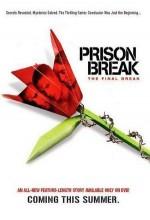 Prison Break : The Final Break