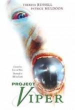 Project Viper (2002) afişi