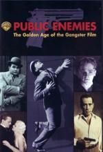 Public Enemies: The Golden Age Of The Gangster Film (2008) afişi