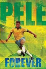 Pelé Eterno (2004) afişi