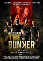 Project 12: The Bunker (2016) afişi