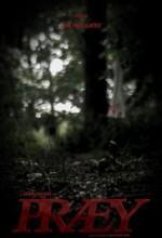 Præy (2017) afişi