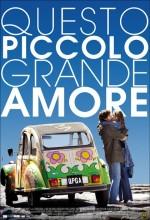 Questo Piccolo Grande Amore (2009) afişi