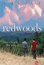Redwoods (2009) afişi