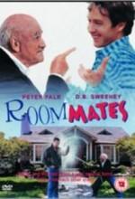 Room Mates (1933) afişi