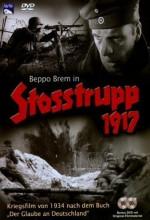 Shock Troop (1934) afişi