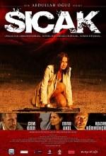 Sıcak (2008) afişi