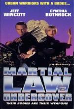 Silahsız Dövüş 2 (1992) afişi