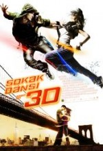 Sokak Dansı 3D – Step Up 3D