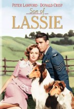 Son Of Lassie (1945) afişi
