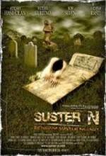 Suster N (2007) afişi