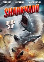 Köpekbalığı İstilası (2013) afişi
