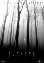 Slender (2016) afişi
