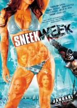 Sneekweek (2016) afişi