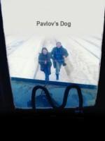 Sobaka Pavlova (2005) afişi