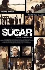 Sugar (2013) afişi
