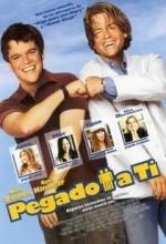 Takıldım Sana (2003) afişi