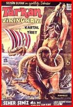 Tarkan Viking Kanı (1971) afişi
