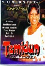 Temidun (2005) afişi