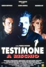 Testimone A Rischio (1996) afişi