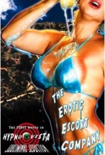 The Bikini Escort Company (2006) afişi