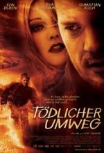 Tödlicher Umweg (2004) afişi